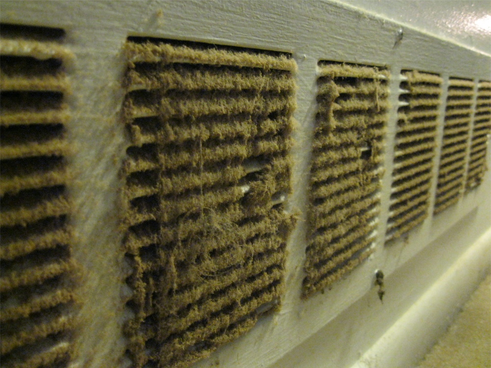 Air Duct Cleaning Atlanta Carpet Cleaning Carpet